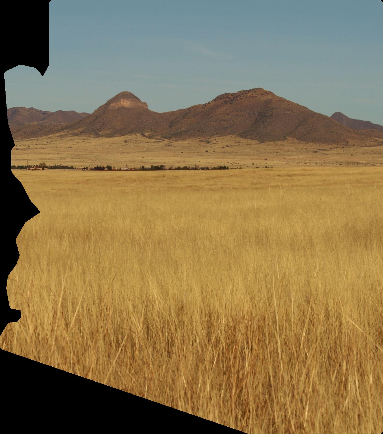 "Arizona Project WET's Mascot ""Drippy"""