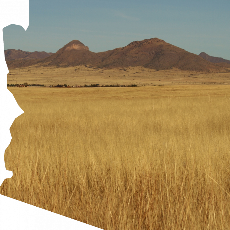State of Arizona Silhouette with Field Background Graphic